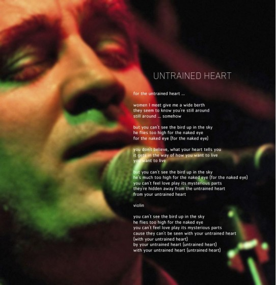 Untrained Heart art-lyrics